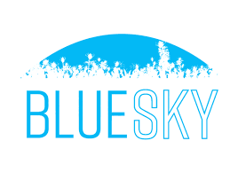Blue Pay Processing LLC