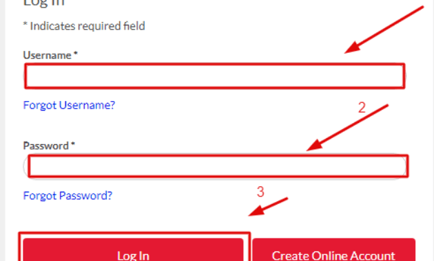 Dish Plus One Login Process from PC