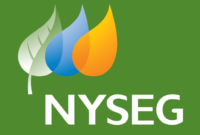 Nyseg Login and Bill Pay Online Guide