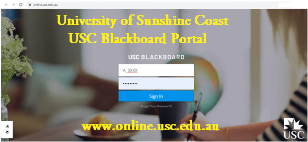 UIC Blackboard Login Guide
